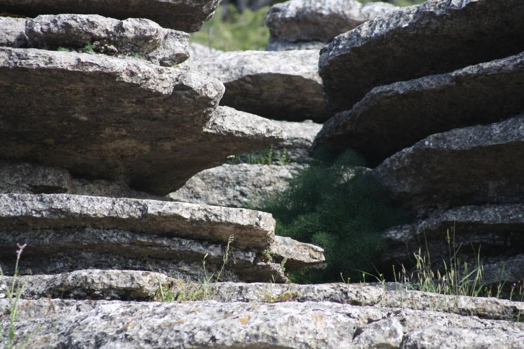 Les rochers calcaires érodés du Torcal