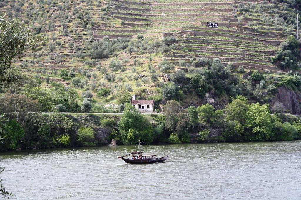 La vallée du Douro à Pinhao